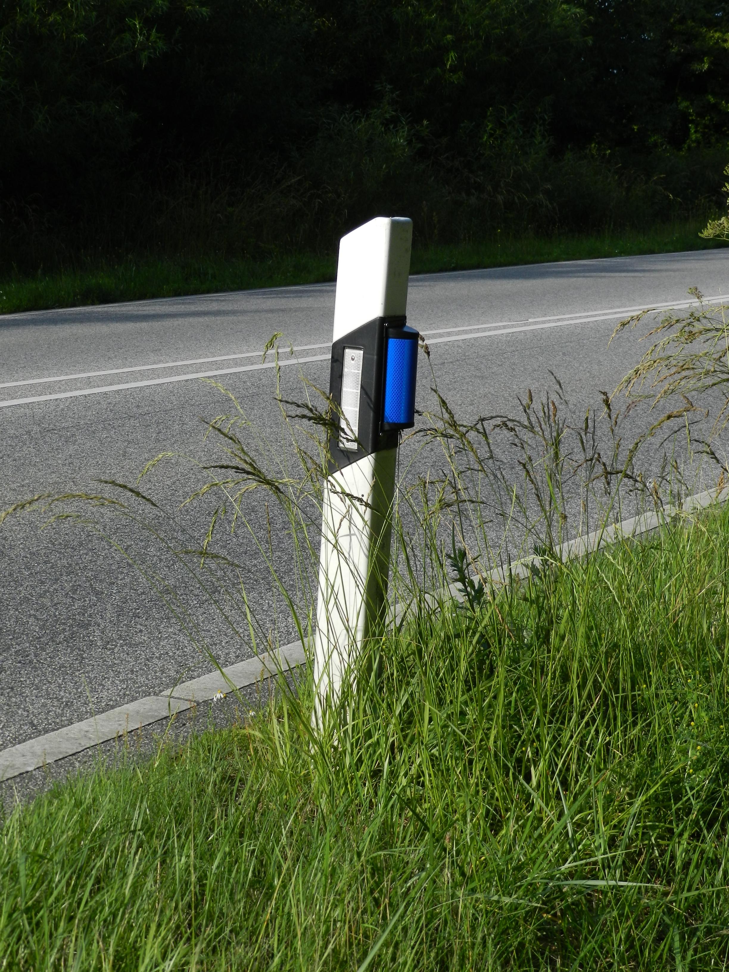 blaue Wildwarnreflektoren an Leitpfosten entlang einer Straße im Lankreis Plön - S. Graumann